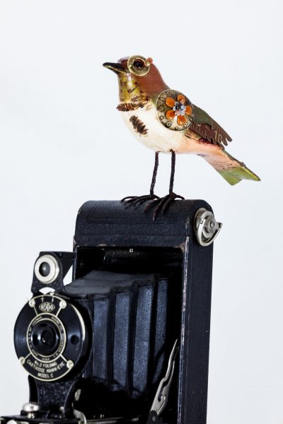 Upcycled Songbird on Vintage Camera