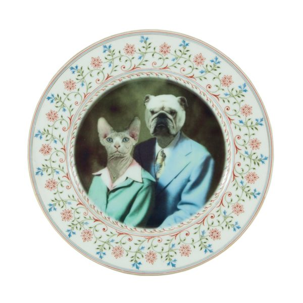 Bulldog and Hairless Cat Plate