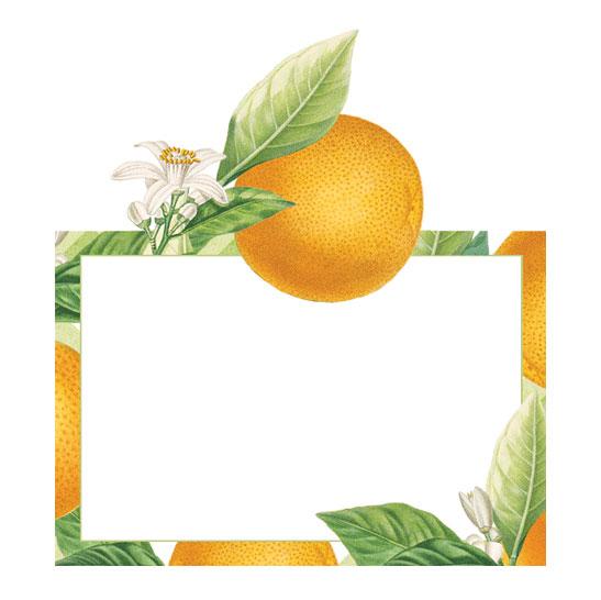 Caspari Orangerie Place Cards